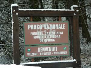 Romagna, Forest, Park, Mountains, Forlì