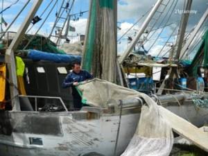 the fisherman in cesenatico