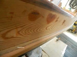 new varnishing of the topo boat romagna