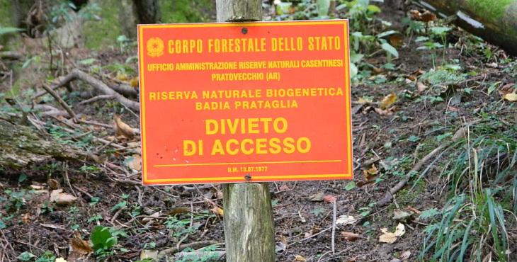 badia prataglia biogenetic forest emilia romagna