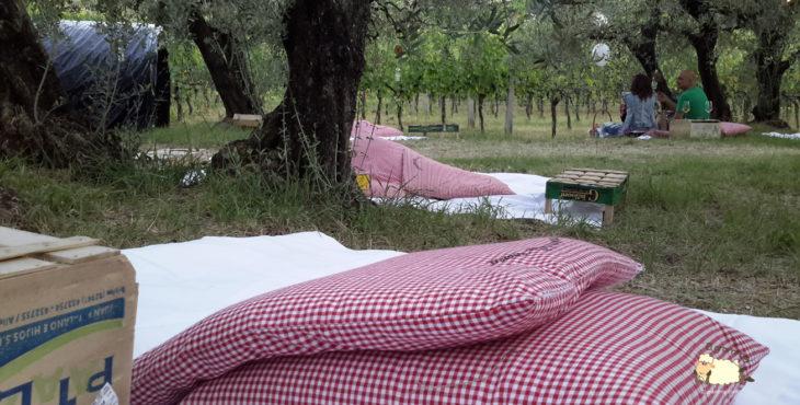 picnic scamporella cesena