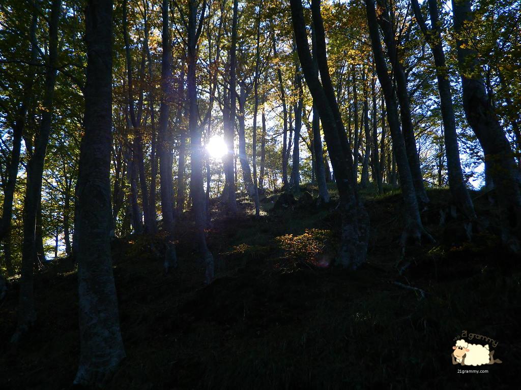 campigna sunset emilia romagna