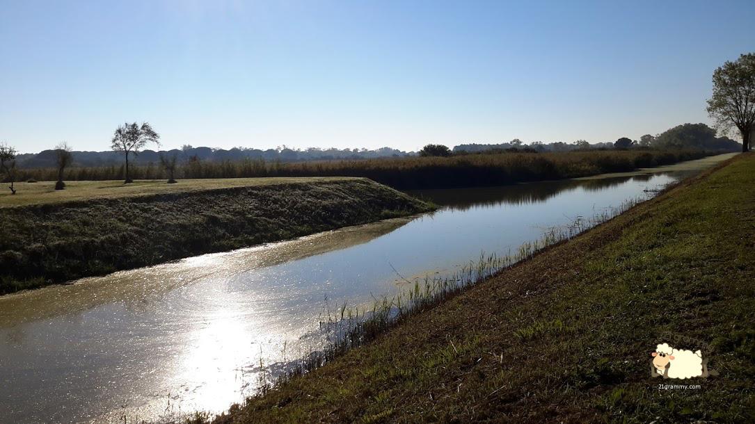 regional park po river emilia romagna