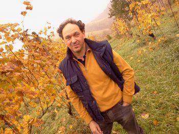 cesena, wine, romagna, forlì