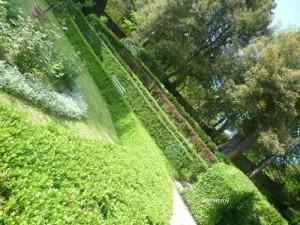 palazzo fantini botanic garden