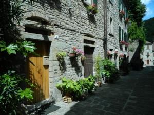 portico di romagna landscapes