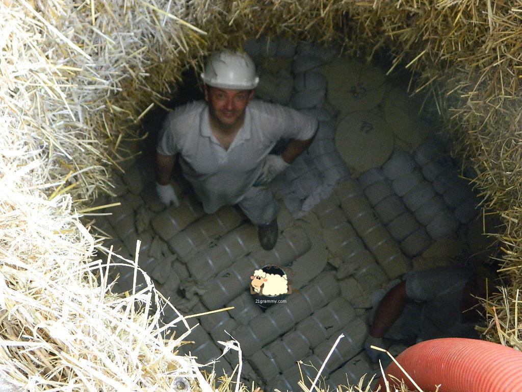 marco pellegrini fossa cheese