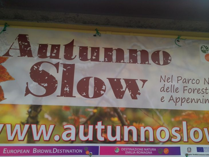 autunno slow 2014
