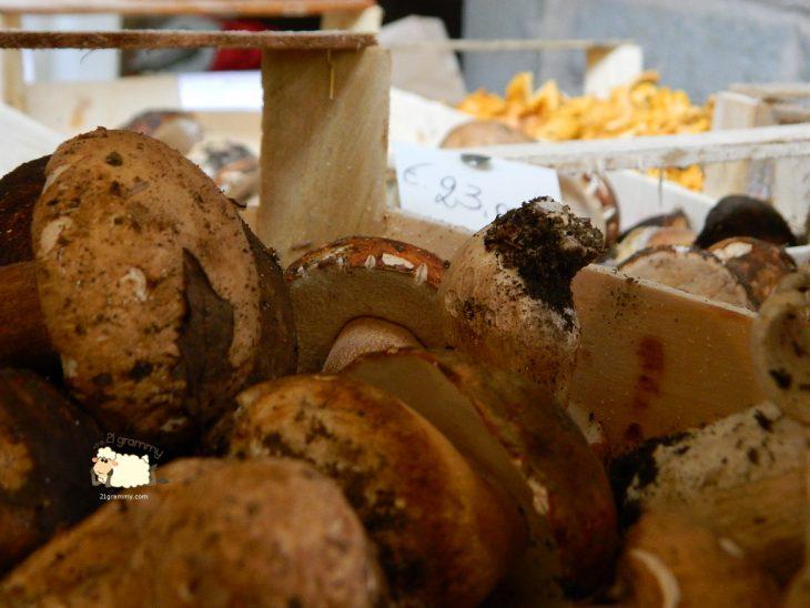 porcini emilia romagna funghi