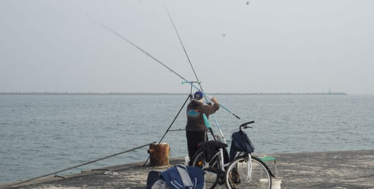 fish man emilia romagna